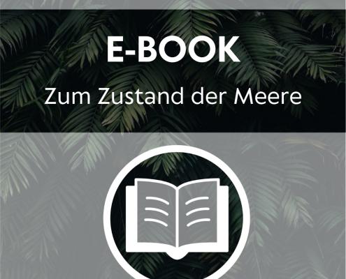 Ebook - Zum Zustand der Meere