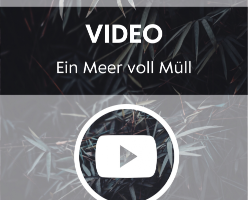 Video - Ein Meer voll Müll